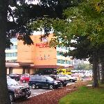 西雅图机场的红狮子酒店