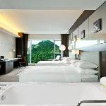 舒适双床房 Comfort Room Twin