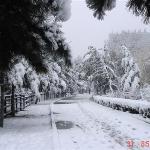 Linjiang Beishan Park