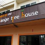 Orange Tree House