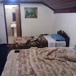 酒店的房间