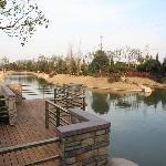 Photo de Green Tree Inn (Shanghai Chongming Nanmen)