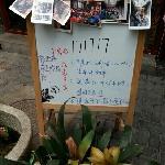 Zdjęcie 4238590
