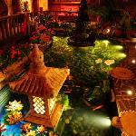 院子风水池夜景