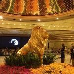 狮头好震撼!