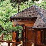 梦幻岛童话树屋