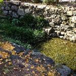 很干净的小水渠