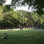 中山大学南草坪