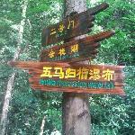 大桂山的景区路标