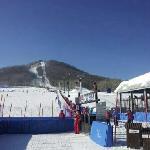 这边的雪道比净月潭好的多得多,而且很早就可以滑雪了。来这边滑雪的人好多!