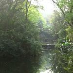 Photo de Yungang Forest Park