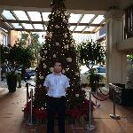 门口的圣诞树