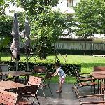 酒店早餐处就在草坪旁边