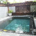 院子里的小泳池/小水坑
