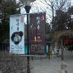 亭林公园入口