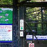 原始森林入口处