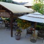 花园早餐区