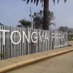 tongvapark