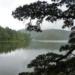普达措国家公园一景