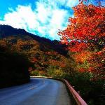 Photo de Mingjia Hostel