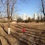 难得一个大蓝天,带着闺女逛森林公园