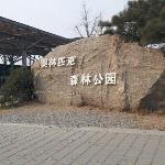 北京五环路内的大型免费公园