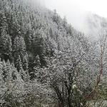 冬日的甘海子国家森林公园,银装素裹