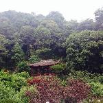 Meijiawu Hostel