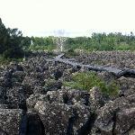 老期火山地貌
