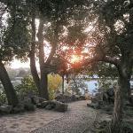 苏州公园里的夕阳景色