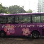 紫色的酒店班车
