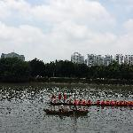 端午节划龙舟