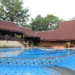 最爱的泳池