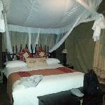 nice tent~