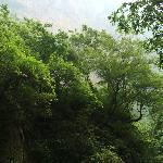重庆黑山谷