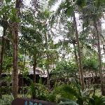 Foto de Angol Point Beach Resort