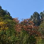 太湖源秋景