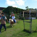 小朋友在体验骑矮种马