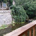 Photo of Nali Resort