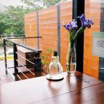 窗台,绿植