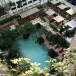 望到的花园,楼下的泳池。