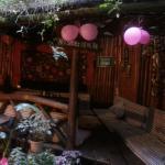 旅舍的小花园