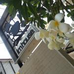 Foto di im house
