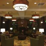 Foto di Holiday Inn Hotel & Suites Denver Airport