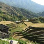 Photo de Dragon's Backbone Rice Terraces