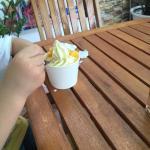 大热天在室外吃的,没开空调,冰淇淋味道一般