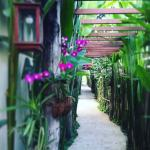 Photo de Shewe Wana Suite Resort