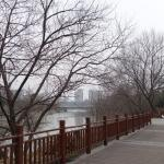 Photo of Regalia Resort & Spa Nanjing Qinhuai River