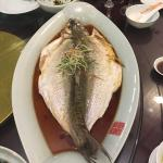 QuYuan CanYin GaoDang HuiSuo Image