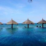 Lotus Village Resort Photo
